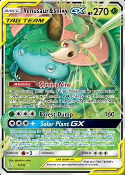 Venusaur & Snivy-GX